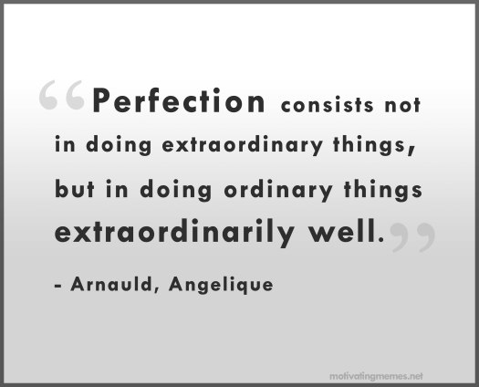 perfection-quote