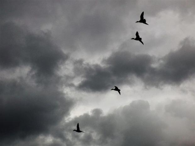 storm-clouds-1